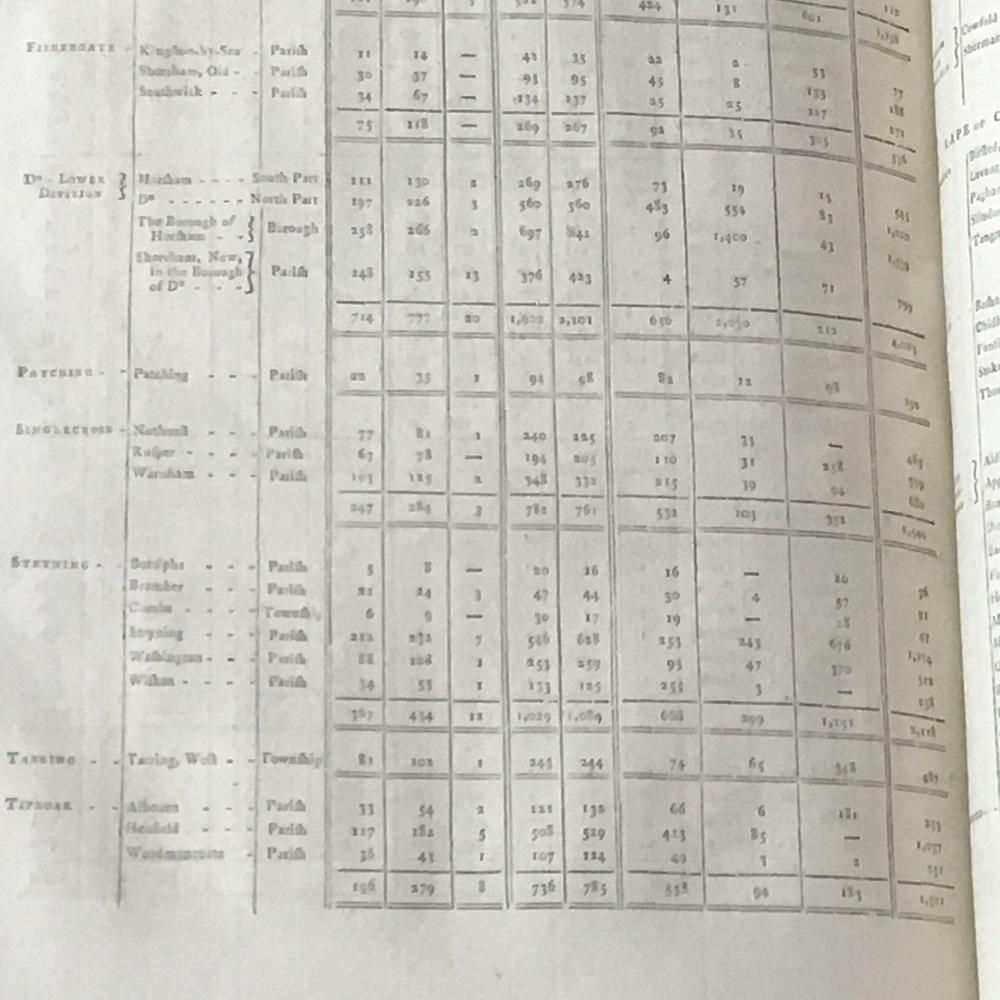 Steyning Census