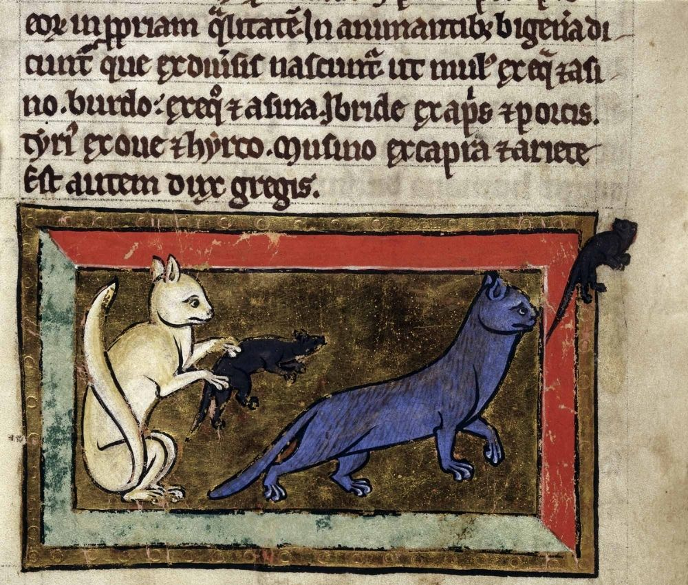 Medieval Bestiary, image copyright British Library
