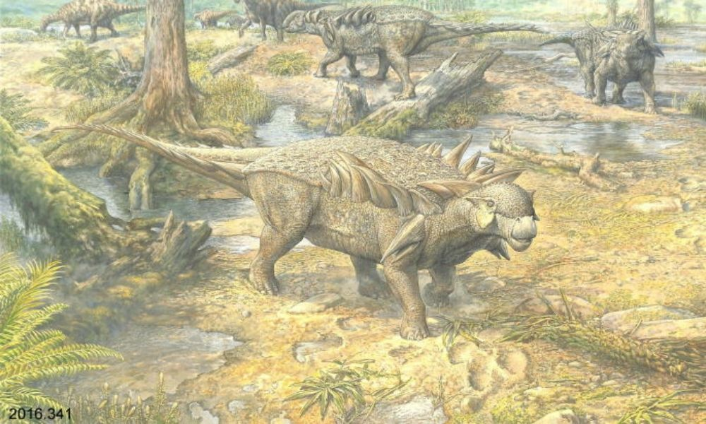 A gouache colour painting of 'Horshamosaurus Rudgwickensis' by artist John Sibbick showing a landscape view of three Horshamosauri and other dinosaurs around a watering hole.