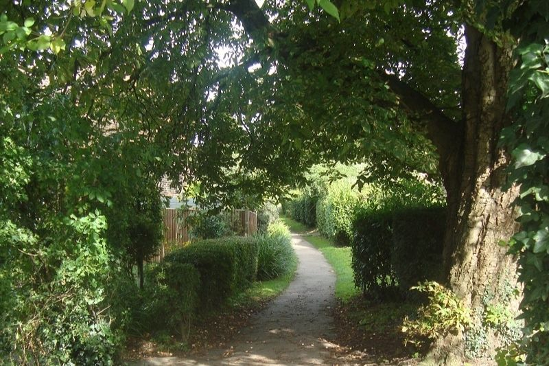 A path between hedgerows in Billingshurst