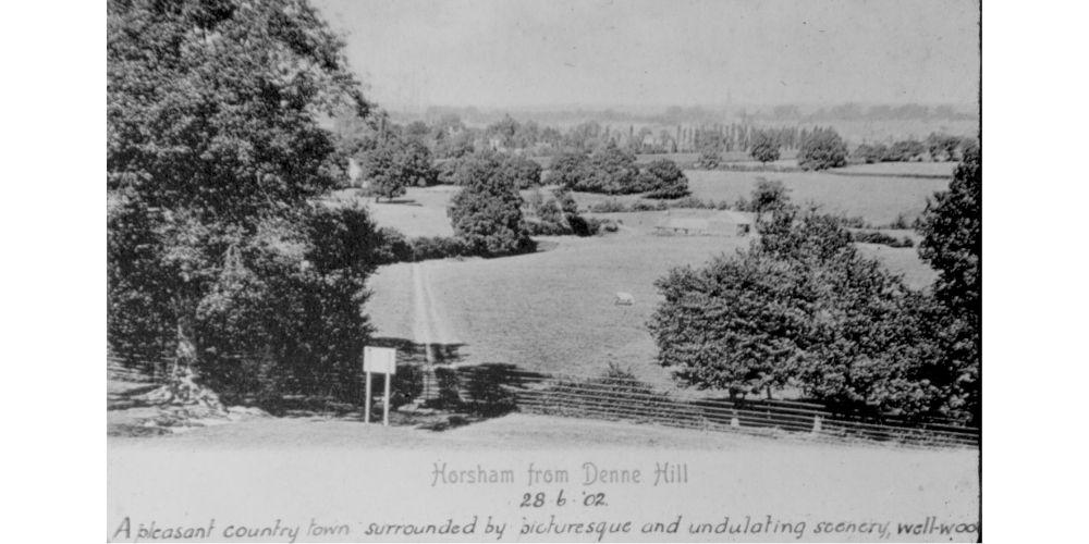 Postcard of Denne Hill Horsham