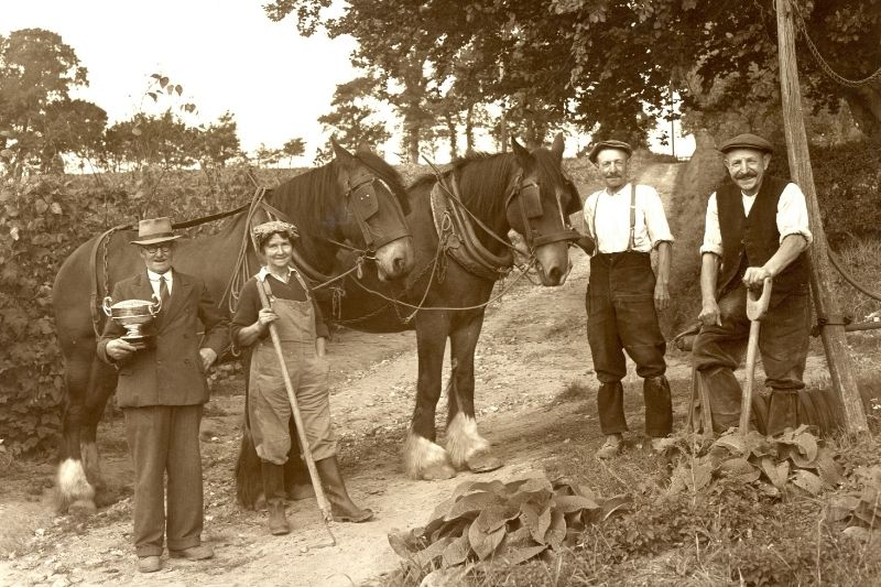 Photograph of a winning ploughing team; three men, one woman and a horse.